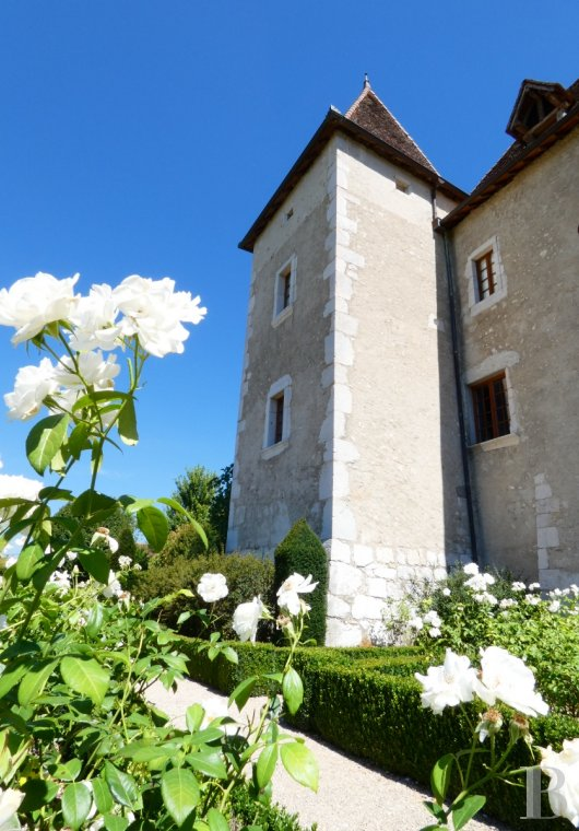 chateaux for sale France rhones alps   - 6