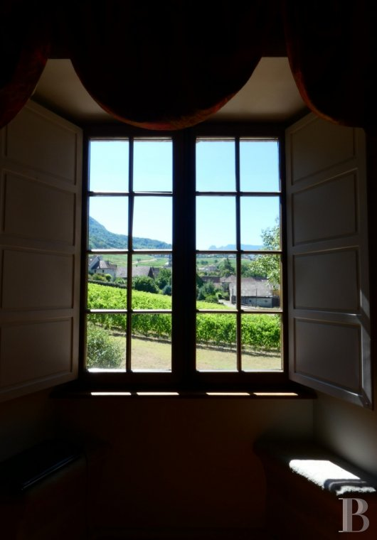 chateaux for sale France rhones alps   - 9