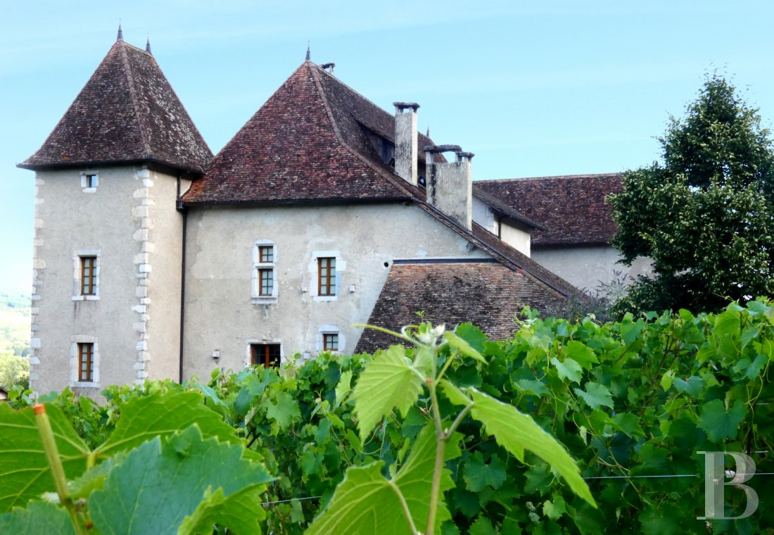 chateaux for sale France rhones alps   - 25
