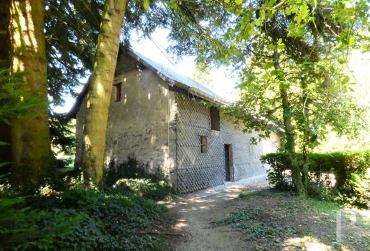 chateaux for sale France rhones alps   - 15
