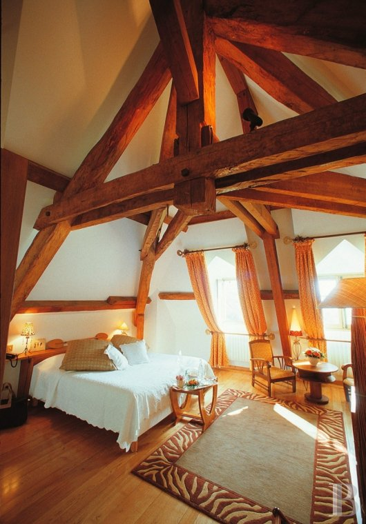 chateaux for sale France rhones alps   - 12