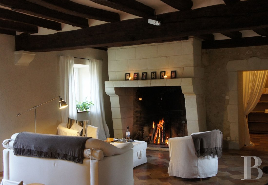 A farm converted into a holiday cottage on an estate classified as a Historic Monument, near to Tours - photo  n°12