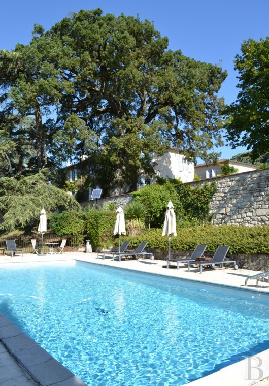 chateaux for sale France aquitaine   - 22