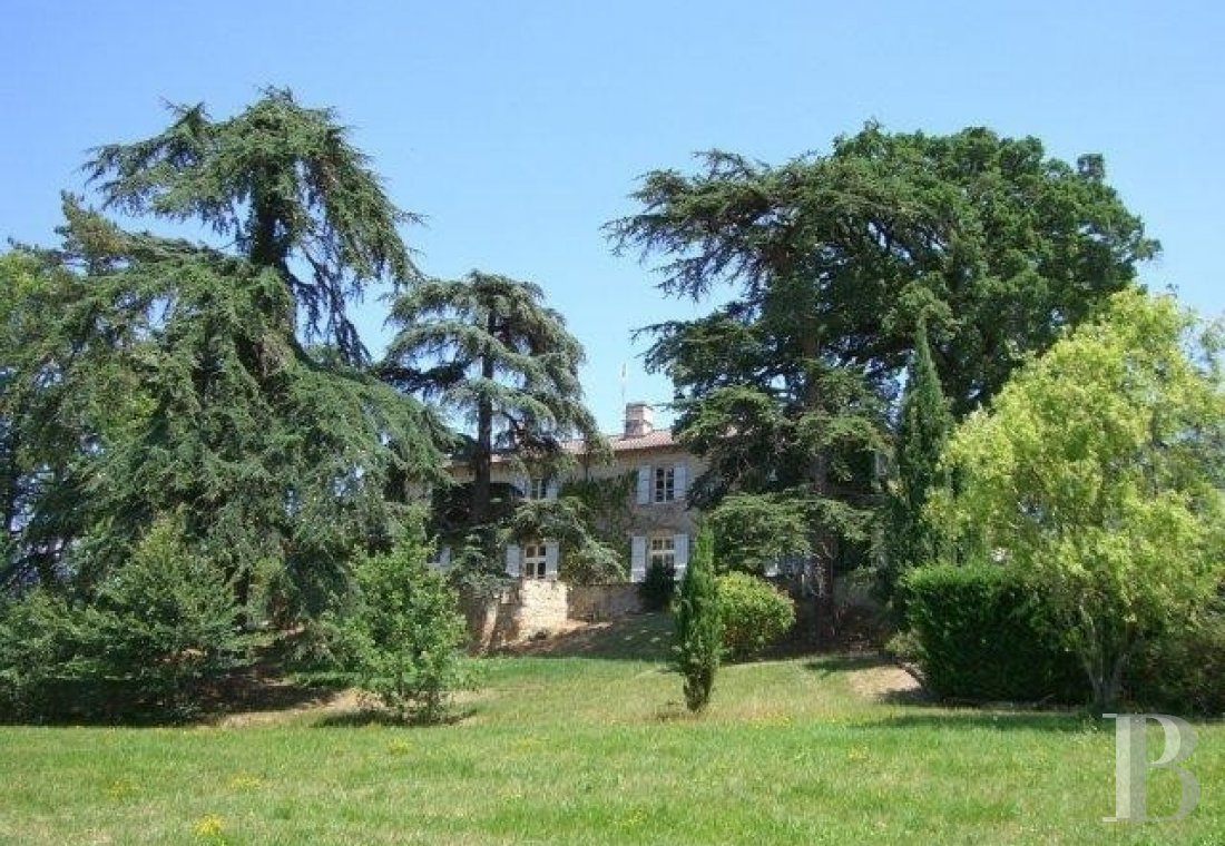 chateaux for sale France aquitaine   - 27