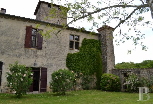 chateaux for sale France aquitaine   - 6
