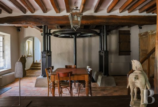 A former water mill at the heart of a vast equestrian estate in the Chevreuse valley - photo  n°13