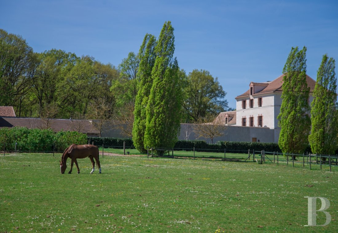 A former water mill at the heart of a vast equestrian estate in the Chevreuse valley - photo  n°3