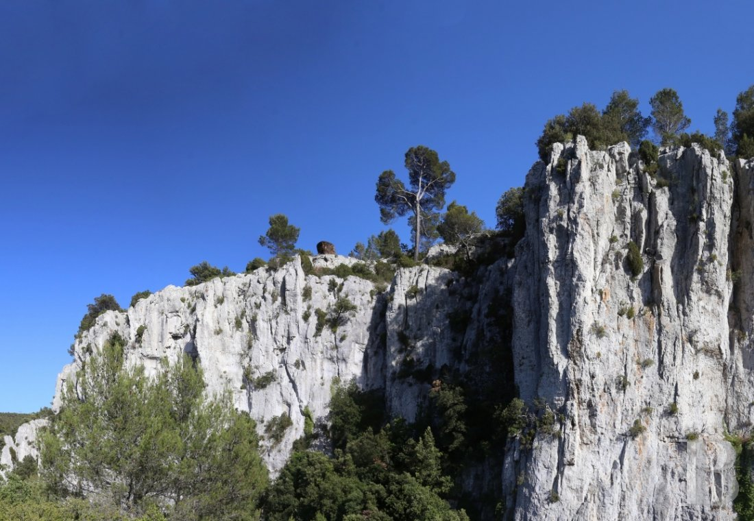A vast estate with three gites in a nature reserve in the the Var - photo  n°3