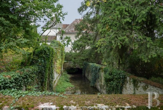 character properties France burgundy   - 15