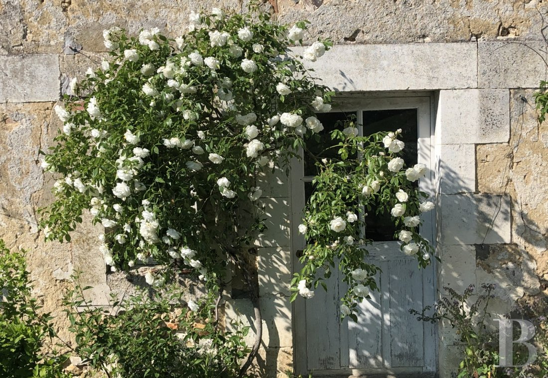 The former home of a painter inspired by nature in the Puisaye region, to the north of Burgundy - photo  n°24
