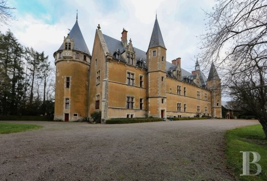 chateaux for sale France burgundy   - 4