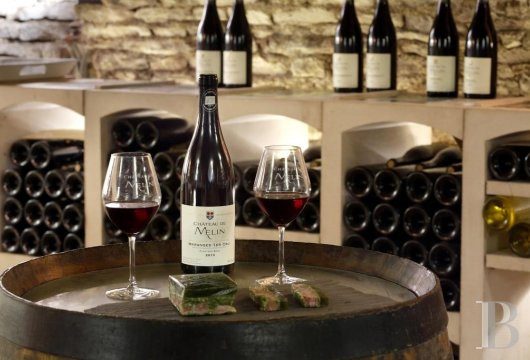 A wine estate and 16th century chateau  in the heart of Burgundy and the Auxey-Duresses vineyards - photo  n°6