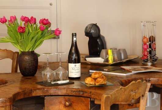 A wine estate and 16th century chateau  in the heart of Burgundy and the Auxey-Duresses vineyards - photo  n°12