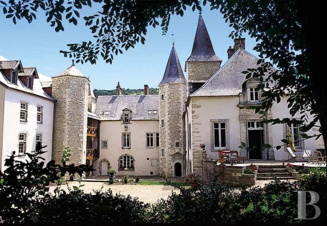 A wine estate and 16th century chateau  in the heart of Burgundy and the Auxey-Duresses vineyards - photo  n°4