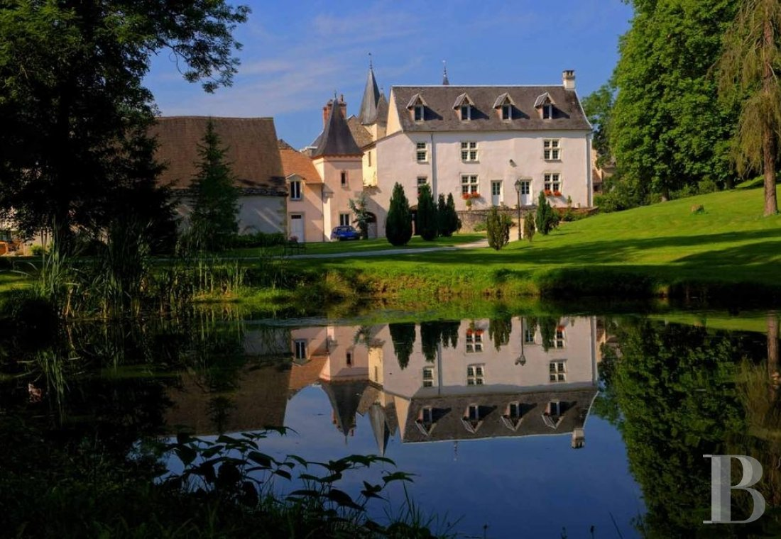 A wine estate and 16th century chateau  in the heart of Burgundy and the Auxey-Duresses vineyards - photo  n°1