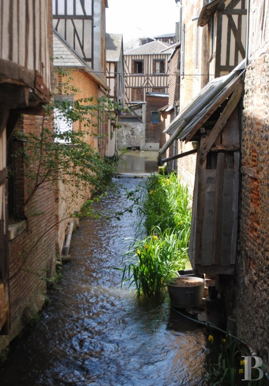 character properties France upper normandy   - 9