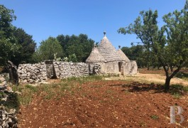 "A 6,400 m² plot of building land and a traditional, dry stone ""trullo""  just a few kilometres from Ostuni, 20 minutes ..."