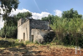 "An authentic farmhouse, known locally as a ""Casale"", and its extension project  on an 8,000 m² plot of land near to ..."