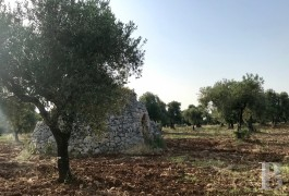 "A traditional, dry stone ""trullo"" on a 1.3 ha plot of land for an architectural project,  in keeping with its surroundings ..."