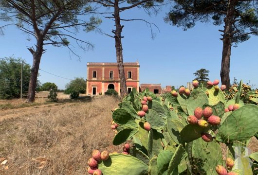 An 870 m² residence, surrounded by pine trees and prickly pear cacti,  in Lecce, in the region of Apulia, on the Salento ...
